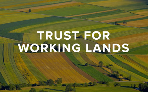 Trust for Working Lands